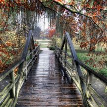 lovely-wooden-bridge-on-a-rainy-autumn-day-hd-wallpaper-581373